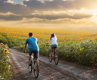 Teen couple riding bike in sunflower field Royalty Free Stock Photos