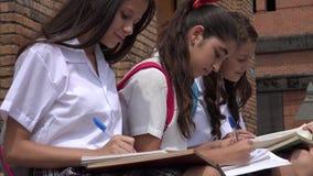 Teen Female Students Studying Stock Photo