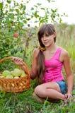 Teen flicka med korgen av äpplen Arkivbild