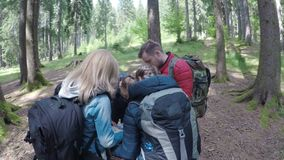 Teen friends travelers looking at the map planning to trekking through forest hiking and adventure in forest concept -. Teen friends travelers looking at the map stock footage