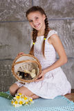 Teen girl with basket full of chicks Stock Photography