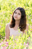 Teen Girl a beautiful meadow Royalty Free Stock Image