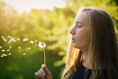 Teen girl blowing dandelion in sunset light Royalty Free Stock Photos