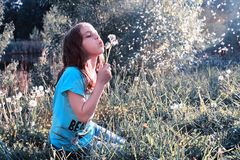 Teen girl blowing seeds from a flower dandelion in spring park. Teen girl blowing seeds from a flower dandelion in a spring park Royalty Free Stock Photo