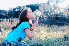 Teen girl blowing seeds from a flower dandelion in spring park. Teen girl blowing seeds from a flower dandelion in a spring park Stock Photos