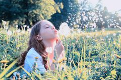 Teen girl blowing seeds from a flower dandelion in spring park Stock Photography