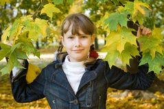 Teen girl with colored maple leaves Royalty Free Stock Photos
