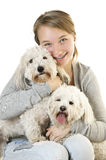 Teen girl with cute dogs stock images