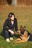Teen girl with dog. Young German shepherd dog is playing with the teen girl royalty free stock photos