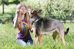 Teen girl with dog Royalty Free Stock Image