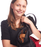Teen girl with a dog in bag Stock Image