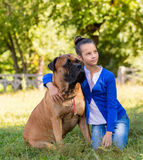 Teen girl with the dog Stock Image