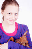 Teen girl with dog in her hands, closeup Royalty Free Stock Photos