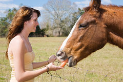 Teen Girl Feeds Horse Royalty Free Stock Photo