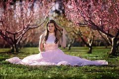 Teen girl in a field of cherry blossoms stock photos
