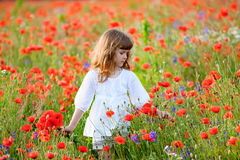 Teen girl among a field of poppies Royalty Free Stock Image