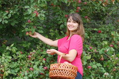 Teen girl  in the garden Royalty Free Stock Photography