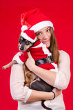 Teen girl and her puppy in Xmas colors Stock Photography