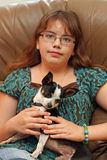 Teen girl holds chihuahua dog. A 13-year-old teenager is holding a black and white chihuahua dog. Teenager has eyeglasses and big brown eyes and brown hair; is Royalty Free Stock Image