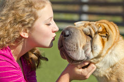 Teen girl kissing a dog Stock Photography