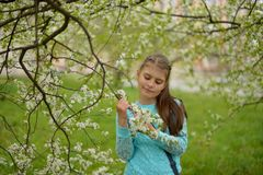 Teen girl with long hair standing next to a blooming Apple tree on a spring stock photography