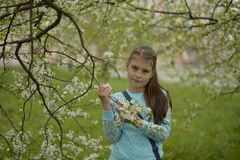 Teen girl with long hair standing next to a blooming Apple tree on a spring royalty free stock image