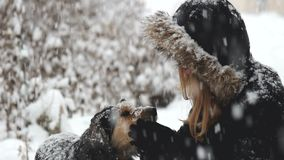 Teen girl play with a dog during snowfall stock video