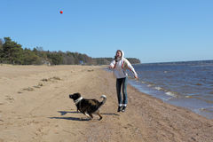 Teen girl playing with a dog in the sand Royalty Free Stock Photos