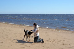 Teen girl playing with a dog in the sand. On the seashore Royalty Free Stock Photography