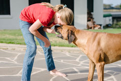 Teen girl playing with her pet dog Stock Images