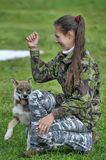 Teen girl playing with a puppy Stock Photos