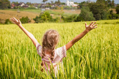 Teen girl on the rice paddies. At the day time Stock Photos