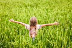 Teen girl on the rice paddies Royalty Free Stock Image