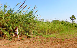 Teen girl runs through a field. With fear Stock Photography