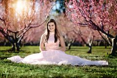 Teen girl in a field of cherry blossoms stock image