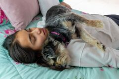 Free Teen Girl Sleeping In Her Bed With Her Dog Royalty Free Stock Images - 178126569