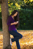 Teen girl standing against autumn tree looking at cell phone Royalty Free Stock Images