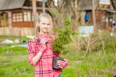 Teen girl with tree seedling royalty free stock photo