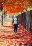 Teen girl walking under canopy of autumn maple leaves. Biracial teen girl or young woman looking up at red and orange maple leaves while walking on carpet of royalty free stock images