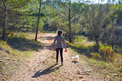 Teen girl walking with a white dog in forest Royalty Free Stock Photo