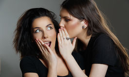 Teen Girls Gossiping Royalty Free Stock Image