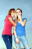 Teen gossip Stock Photos