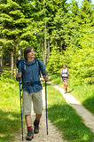 Teen hikers trekking in pine forest Royalty Free Stock Photos