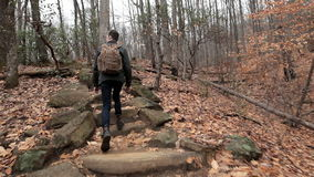 Teen hiking through forest. Young man hiking through autumn forest, slow motion video stock footage