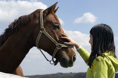 Teen and Horse. A teen girl pets nice horse during nice sunny day Royalty Free Stock Photography