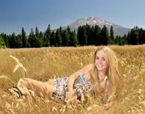 Teen in meadow. Teen girl in golden meadow Stock Images