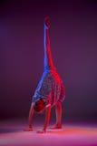The teen modern ballet dancer. The female teen modern ballet dancer on blue and pink studio background stock images