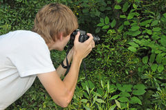 Teen Nature Photographer. Teen photographer shoots a macro shot in a forest Stock Photography