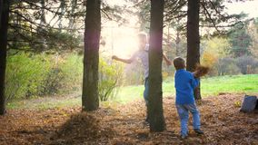 A teenager plays with a child, runs in the Park around a tree and catches up with him. The sun`s rays penetrate the pine stock video footage