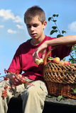 Teen rest from the harvest Royalty Free Stock Photos
